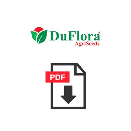 pdf-df
